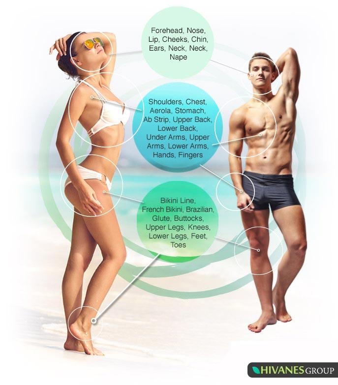 نواحی مختلف بدن